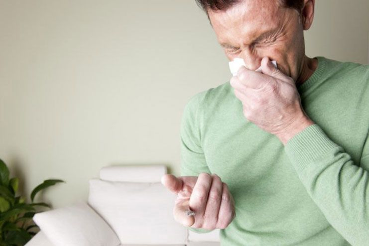 What is Dust Allergy