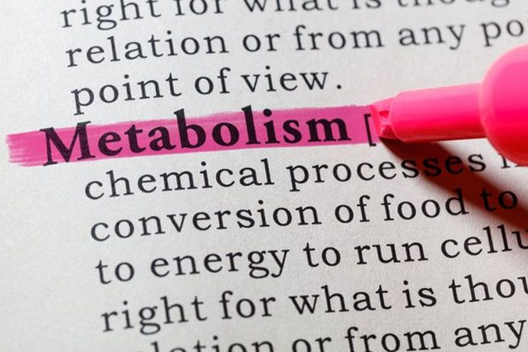 Why Is Boosting Metabolism Necessary