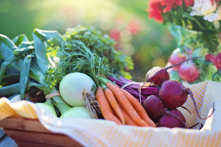Do organic shopping
