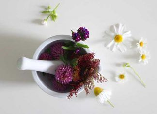 Pros and cons of alternative medicine