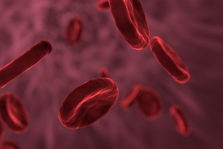 Promotes blood circulation