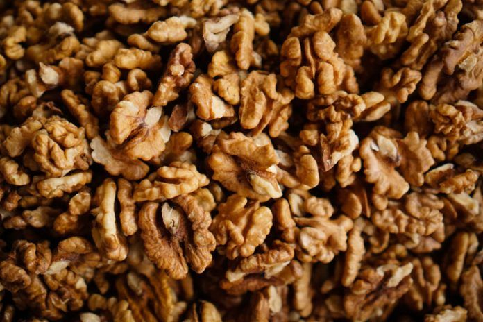 Eating-Walnuts-Can
