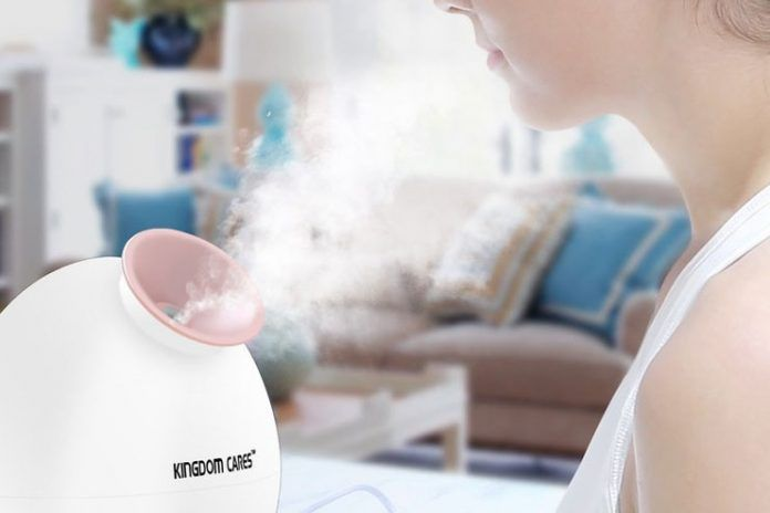 best steam inhalers