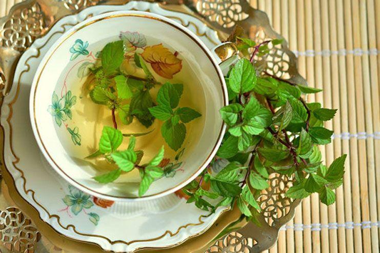 Drink spearmint tea
