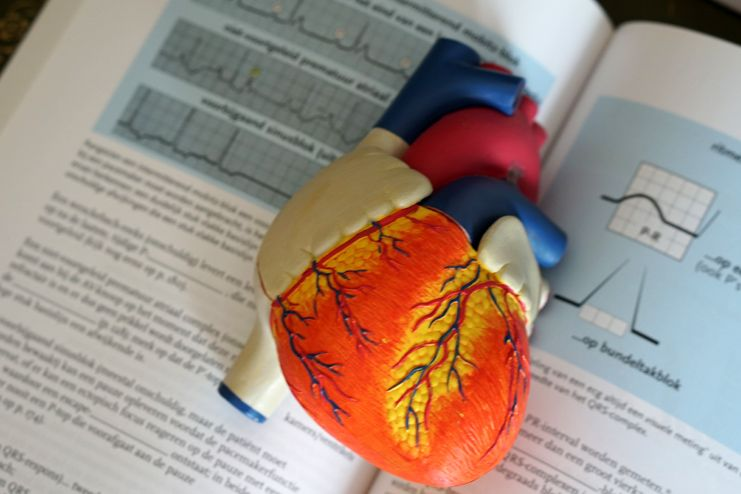 Reduced risks of heart diseases