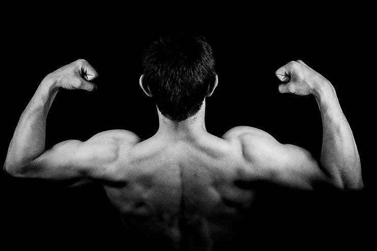 Promote muscle building