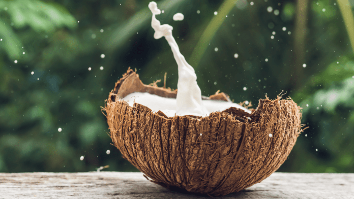 Amazing Coconut Milk Benefits For Hair, Face And Skin