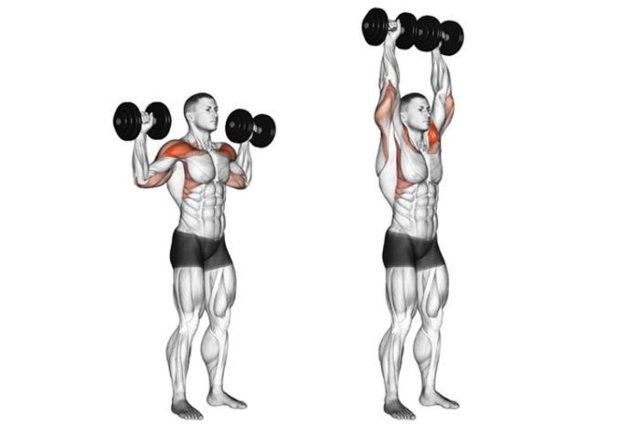 10 Best Overhead Press Alternatives You Can Practice