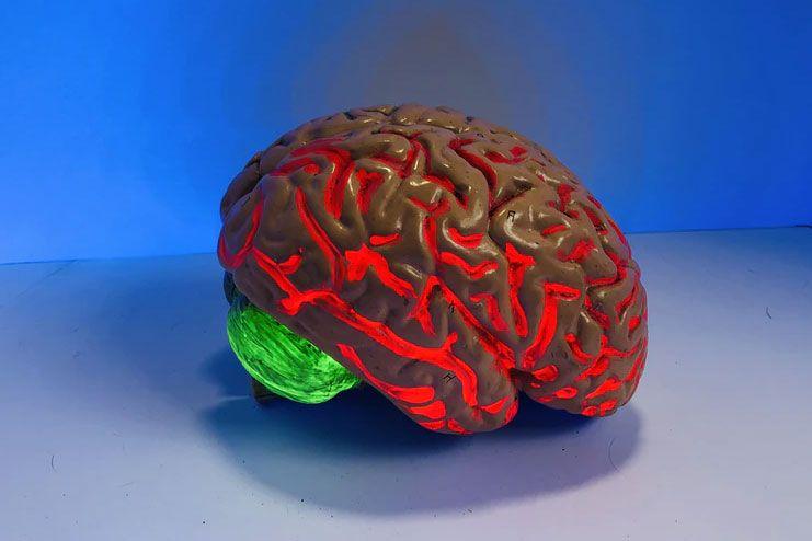 Neurological diseases